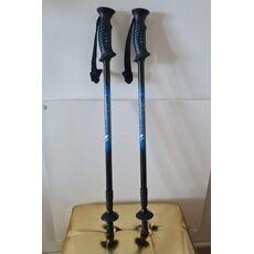 walking sticks 01