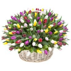Bouquet of tulips of different colors 100 pieces